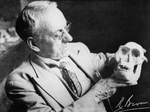 """Robert Broom mit dem Schädel von """"Mrs. Ples""""."""